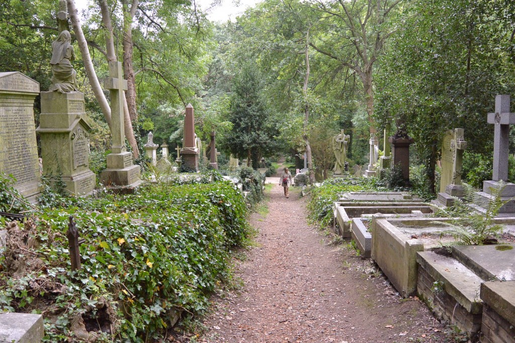 Pathways lead to hidden gravesites.
