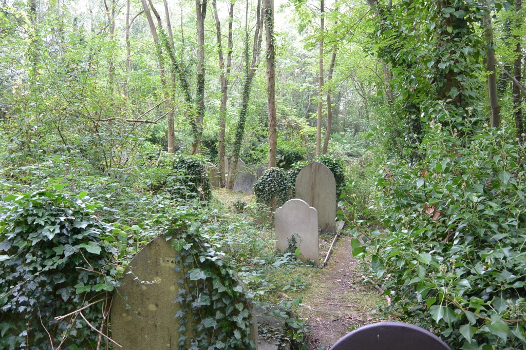 More overgrown graves.